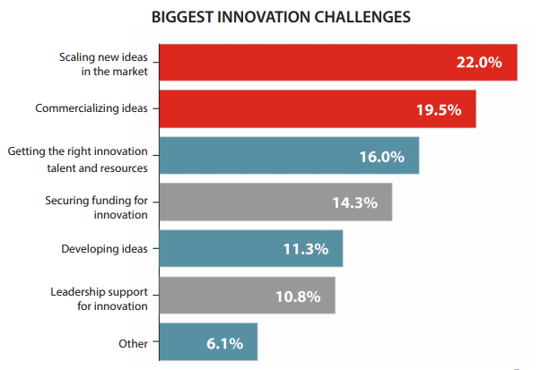 Biggest Innovation Challenges - Question: What is your companys biggest innovation challenge?